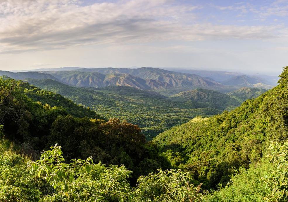 Simien Mountains and Lalibela